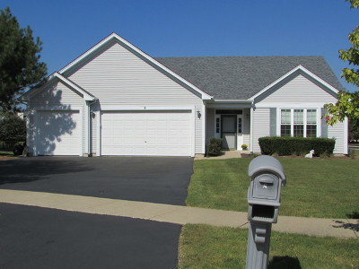 Bolingbrook Single Family Home For Sale: 8 Palmer Court