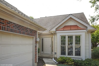 Schaumburg Single Family Home For Sale: 247 Devonshire Court