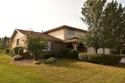 Orland Park Single Family Home For Sale: 11919 South Pinecreek Drive