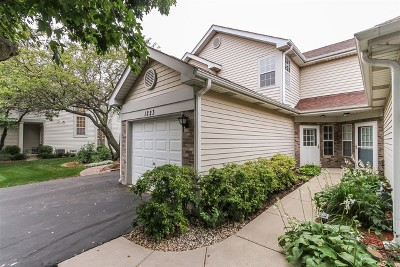 Schaumburg Condo/Townhouse For Sale: 1223 Cranbrook Drive