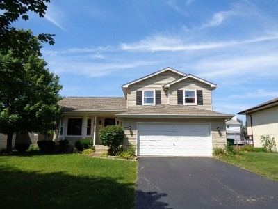 Plainfield Single Family Home For Sale: 2415 Leckrone Drive