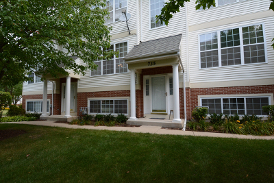 St. Charles Condo/Townhouse For Sale: 735 Pheasant Trail
