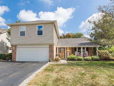 Carol Stream Single Family Home New: 1235 Spring Valley Drive
