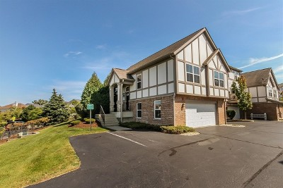 Lake Zurich Condo/Townhouse For Sale: 71 Rosehall Drive