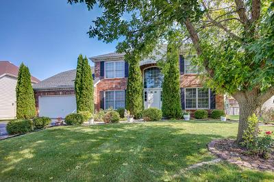 Plainfield Single Family Home For Sale: 2232 Irvine Lane