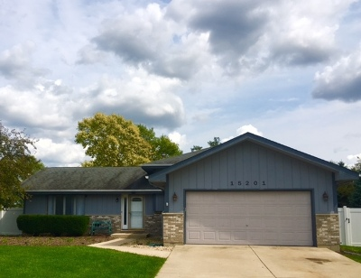 Plainfield Single Family Home For Sale: 15201 South Indian Boundary Line Road