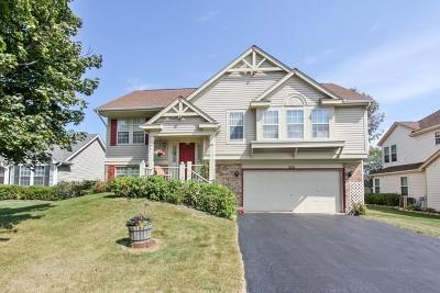 Lake Zurich Single Family Home For Sale: 1097 Lexington Lane