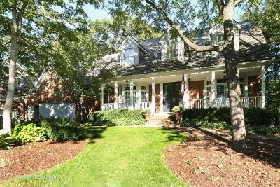 Naperville Single Family Home New: 207 Crooked Tree Court