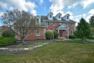 Orland Park Single Family Home New: 14065 Marilyn Terrace
