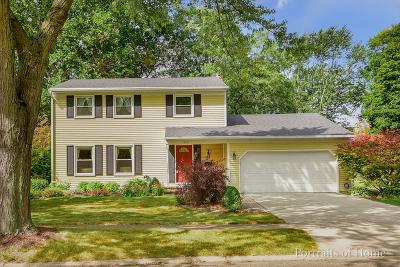 Naperville Single Family Home For Sale: 233 James Lane