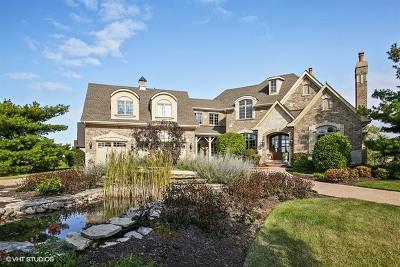St. Charles Single Family Home For Sale: 5n155 Prairie Lakes Boulevard