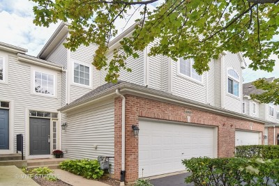 Hoffman Estates Condo/Townhouse New: 6069 Delaney Drive