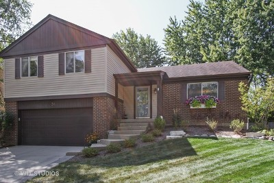 Vernon Hills Single Family Home For Sale: 30 Monterey Drive