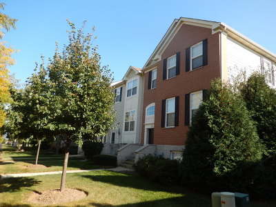 Elgin Condo/Townhouse New: 206 Comstock Drive
