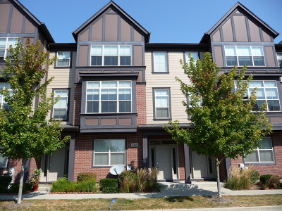 Vernon Hills Condo/Townhouse For Sale: 346 Alpine Springs Drive