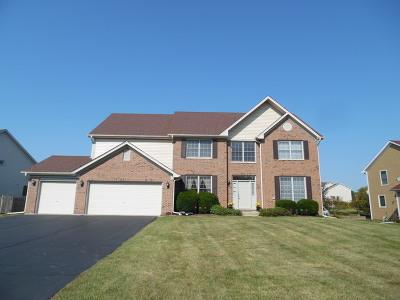 Hoffman Estates Single Family Home New: 5470 Fox Path Lane