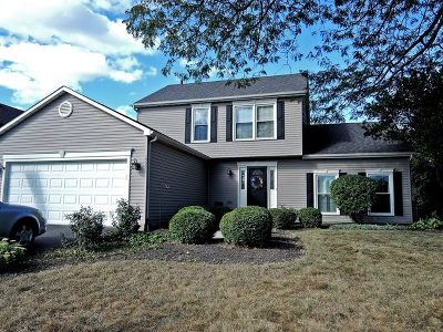 Wheaton Single Family Home For Sale: 1922 Clydesdale Drive
