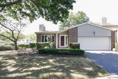 Naperville Condo/Townhouse For Sale: 19 Pebblewood Trail