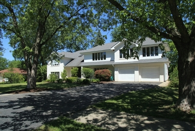 Downers Grove Single Family Home For Sale: 4141 Downers Drive