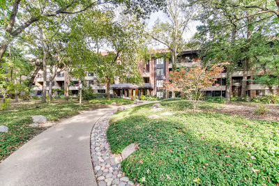 Hinsdale Condo/Townhouse For Sale: 1401 Burr Oak Road #304B
