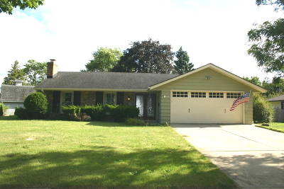 Aurora Single Family Home For Sale: 2190 Candleberry Lane