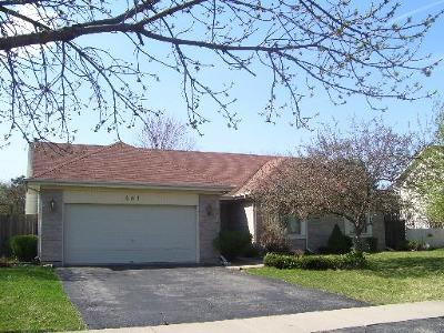 Bolingbrook Single Family Home New: 481 Bradford Place Drive