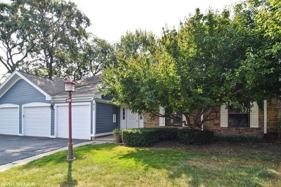 Schaumburg Condo/Townhouse New: 400 Heather Court #B2