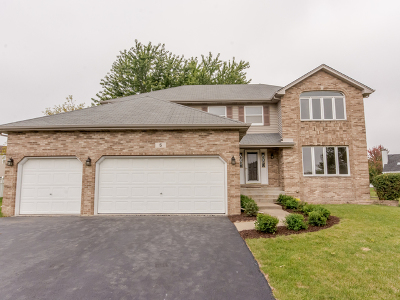 Bolingbrook Single Family Home New: 5 Rolling Meadows Court