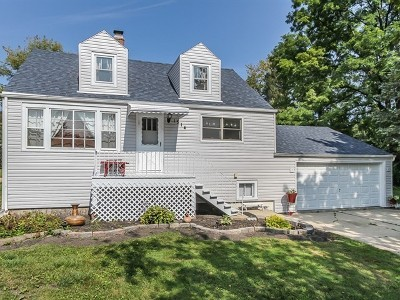 Algonquin Single Family Home For Sale: 1514 North Harrison Street