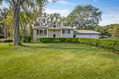 Libertyville Single Family Home For Sale: 15569 West Wildwood Court
