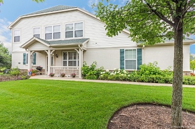 Vernon Hills Condo/Townhouse For Sale: 259 Shadow Creek Circle