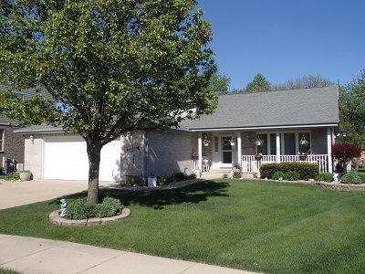 Homer Glen Single Family Home New: 14353 Surrey Court