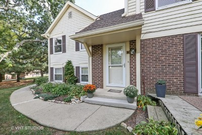 Lisle Condo/Townhouse For Sale: 2765 Weeping Willow Drive #B