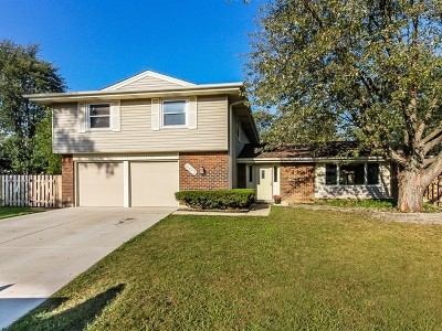 Schaumburg Single Family Home For Sale: 407 Courtland Court