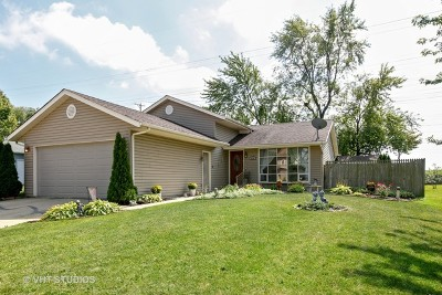 Romeoville Single Family Home New: 833 Oakton Avenue