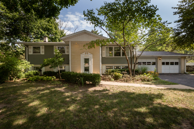 Plainfield Single Family Home For Sale: 15217 South Lakeside Court