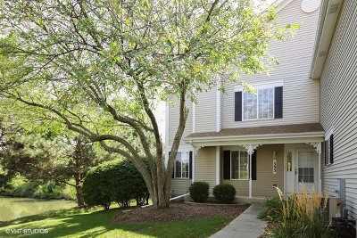 South Elgin Condo/Townhouse For Sale: 393 Lowell Drive #393