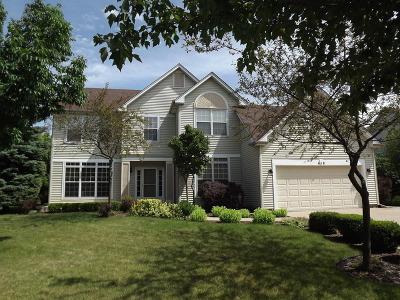 Oswego Single Family Home For Sale: 418 Stonewater Lane