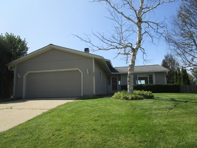 McHenry Single Family Home New: 301 Brookwood Trail
