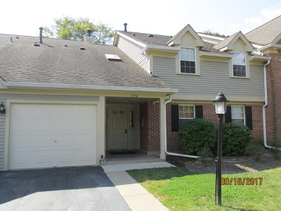 Schaumburg Condo/Townhouse New: 196 Dublin Court #X2