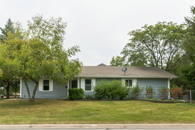 Naperville Single Family Home New: 214 North Laird Street