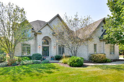 Geneva Single Family Home For Sale: 0s100 North Mathewson Lane
