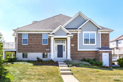 Naperville Condo/Townhouse New: 2827 Blakely Lane