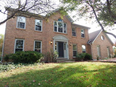 Naperville Single Family Home New: 303 W Bailey Road