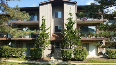 Woodridge Condo/Townhouse New: 2525 Spring Street #2806