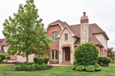 Frankfort Single Family Home New: 22440 Cobblestone Trail