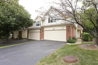 Hoffman Estates Condo/Townhouse New: 2250 Seaver Lane