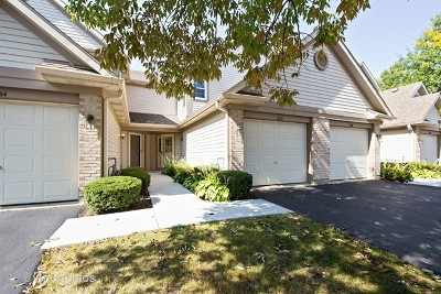 Schaumburg Condo/Townhouse New: 1632 Orchard Avenue