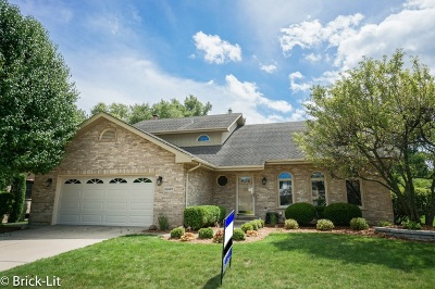 Orland Park Single Family Home New: 11649 Valley Brook Drive