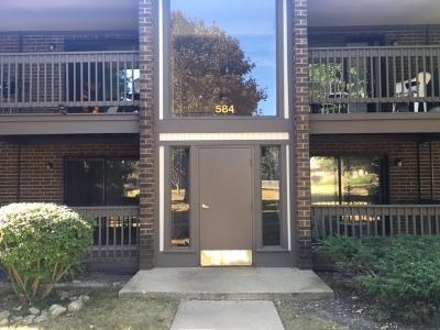 Crystal Lake Condo/Townhouse New: 584 Somerset Lane #1
